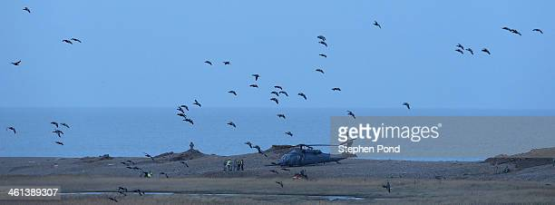 Military personnel and emergency services attend the scene on the coast after a US Air Force helicopter crashed on marshland on January 8 2014 in...