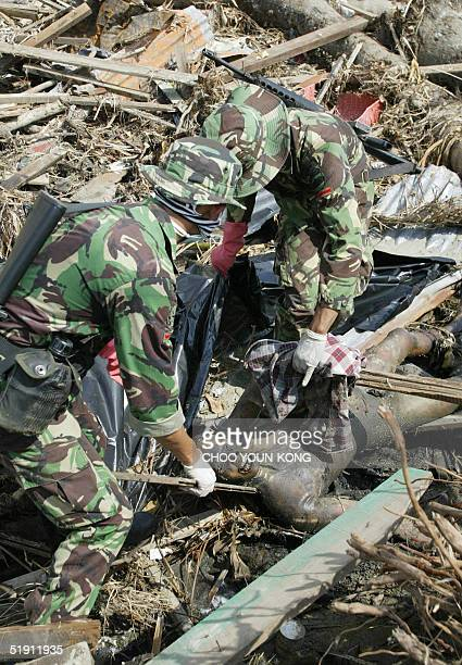 Military personnel extract a dead body from the debris in Banda Aceh 04 January 2005 Indonesia's confirmed toll has remained steady at around 94...