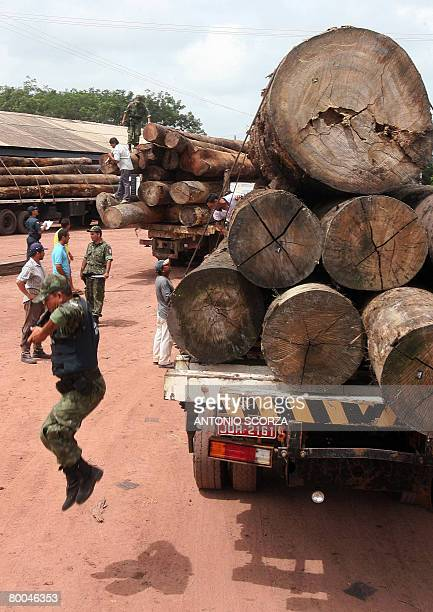 A Military Police agent jumps from a lorry loaded with confiscated wood in the clandestine sawmill TaiPlac during the Arch of Fire operation in...