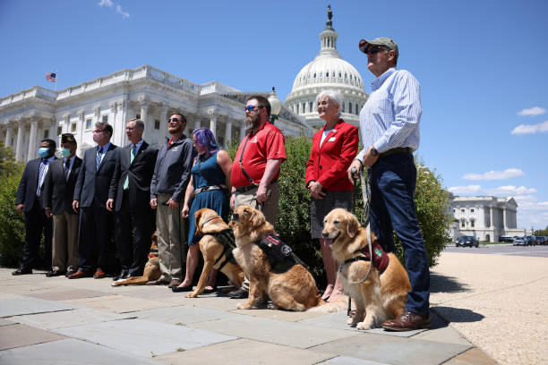 DC: House Members Discuss New Veterans Therapy Act Using Service Dogs