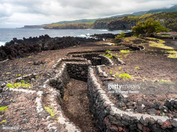military trenches on the coast by the sea from the time of the second world war in terceira island in the azores islands, portugal. - trench stock pictures, royalty-free photos & images