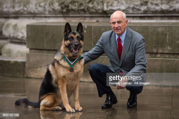 US Military working dog Ayron who has received a posthumous PDSA Dickin Medal on behalf of Chips a WWII US Army dog with Chips' former owner John...