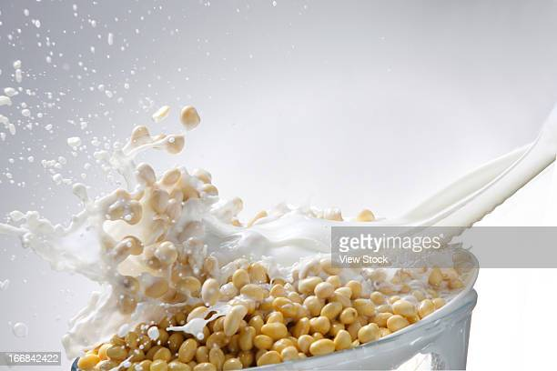 Milk and soybean