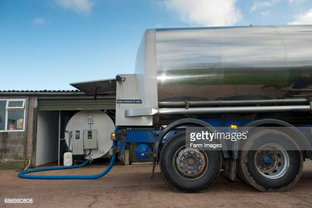 Milk being collected off farm in a tanker
