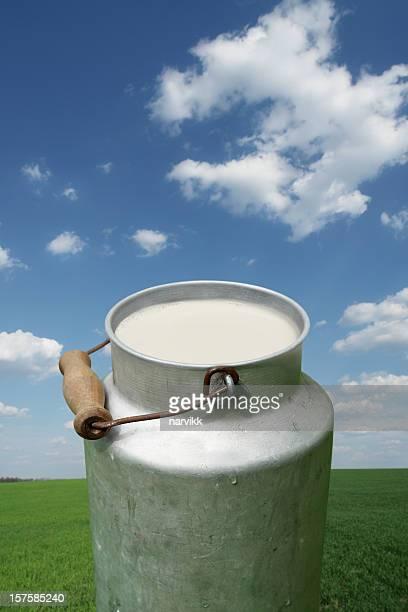 Baratte à lait sur champ vert