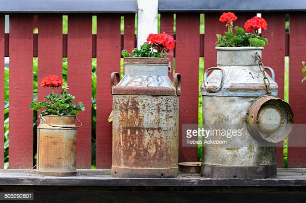 Milk churn with red flowers