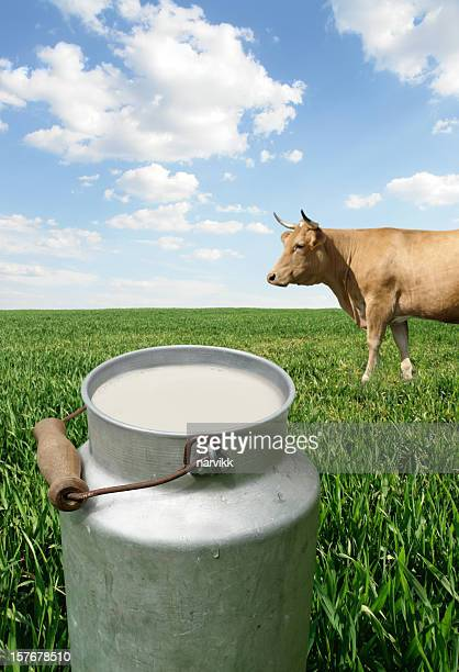 Milk Container and Cow on the Green Field