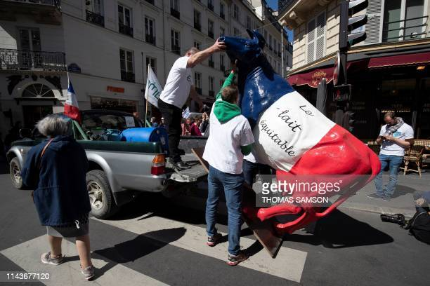Milk producers carry a fake cow bearing the writing fair trade milk as they demonstrate close to the French Agriculture Ministry in Paris on May 14...