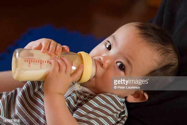 milk time - peter lourenco photos et images de collection