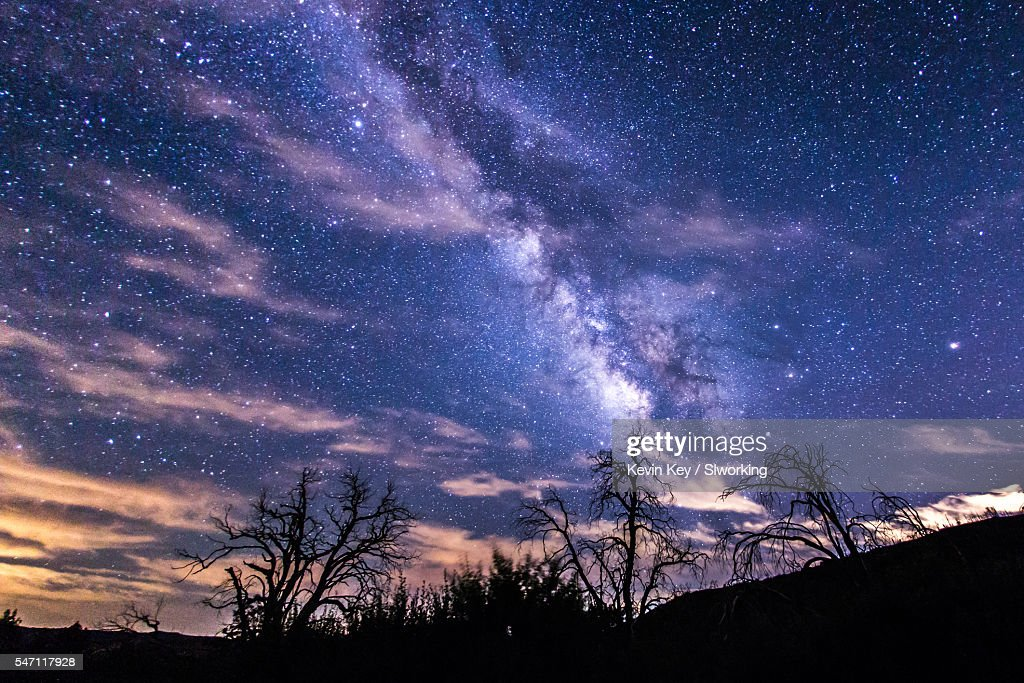 Milky Way Above Dead Trees On A Partly Cloudy Night Stock
