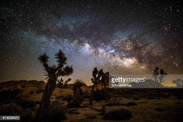 milky way and stars over joshua tree desert - astronomy stock pictures, royalty-free photos & images