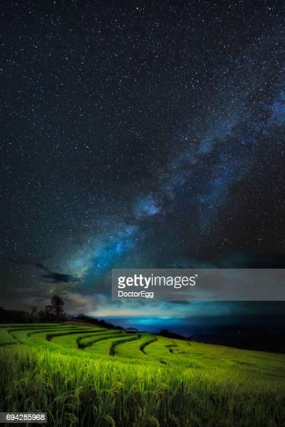 Milky Way and Terrace Rice Field at Doi Inthanon Mountain, Chiangmai, Thailand