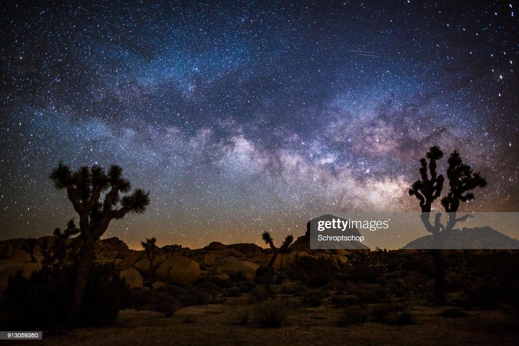 Milky Way in the desert : Stock Photo