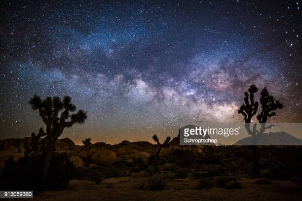 milky way in the desert - milky way stock pictures, royalty-free photos & images