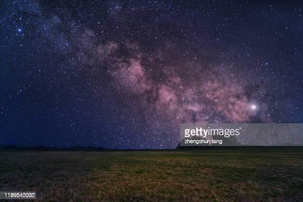 milky way on top of grass field - 内モンゴル自治区 ストックフォトと画像