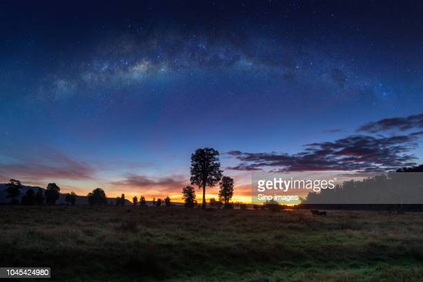 milky way over field and forest, new zealand - image stock pictures, royalty-free photos & images