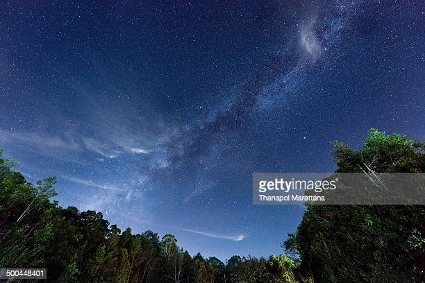 Milky way over Khao yai international park