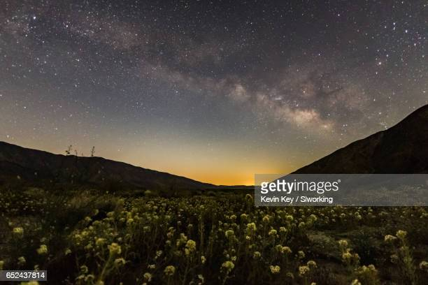 milky way over the anza-borrego desert wildflowers 2017 - anza borrego desert state park stock pictures, royalty-free photos & images