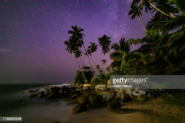 Milky Way over the coconut palms on the beach. Sri Lanka
