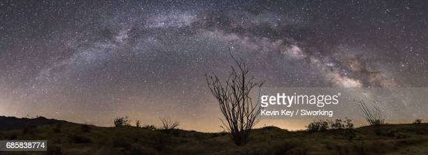 Milky Way Over the Ocotillo in Anza-Borrego Desert State Park