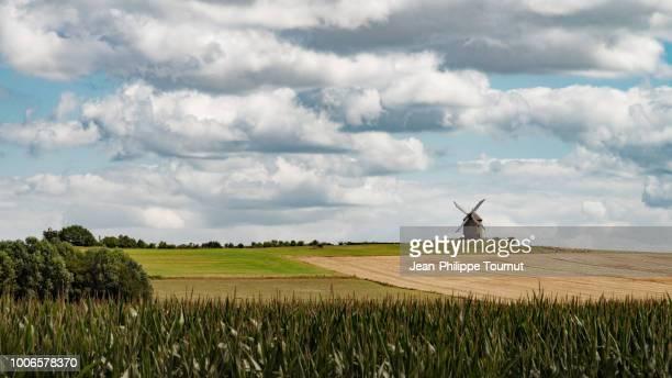 a mill on a hill near the mont saint-michel, bretagne, normandie, france - ノルマンディー ストックフォトと画像