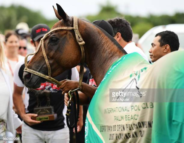 Millenaria owned by Mariano Obregon of The Daily Racing Form gets awarded 'Best Playing Pony' in the US Open Polo Championship against Valiente April...