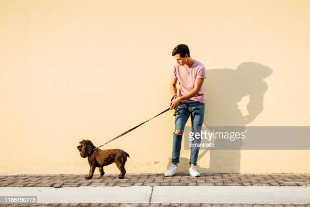 millenial boy walking his dog - pet leash stock pictures, royalty-free photos & images