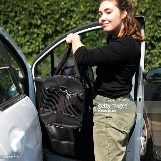 """millennial woman and newly adopted kitten in pet carrier in car. - """"martine doucet"""" or martinedoucet stock pictures, royalty-free photos & images"""