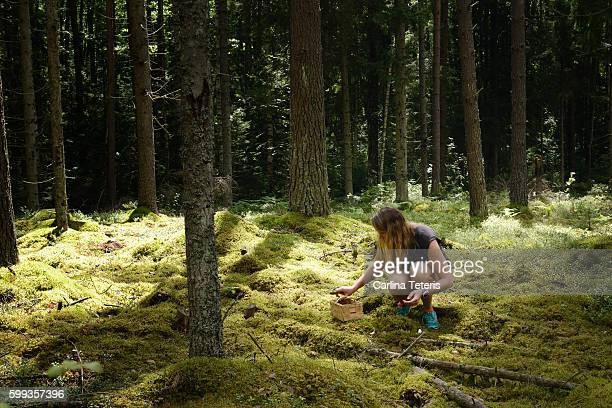 Millennial woman foraging for wild mushrooms on the forest floor