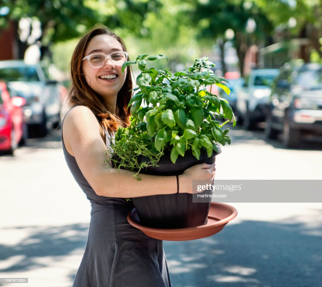 Millennial young woman moving a plant in new apartment. : Stock Photo