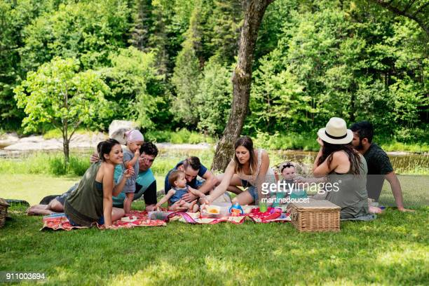 "millennials families having a picnic outdoors in summer. - ""martine doucet"" or martinedoucet stock pictures, royalty-free photos & images"