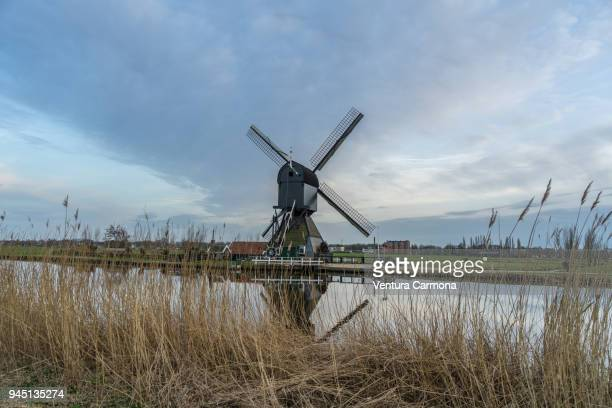 mills at kinderdijk - the netherlands - old windmill stock photos and pictures