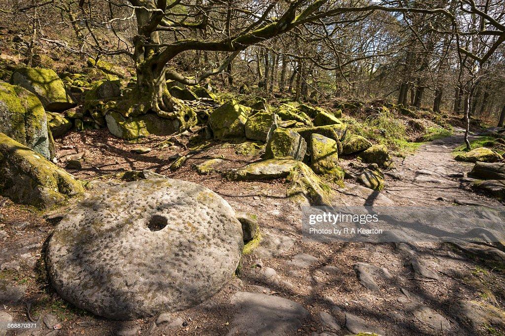 Millstone at padley Gorge, Derbyshire : Stock Photo