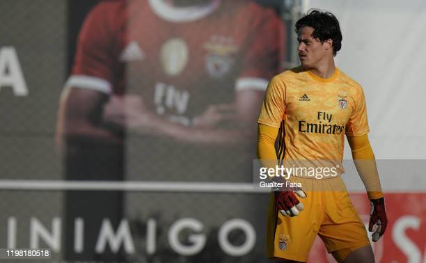 Milos Svilar of SL Benfica B looks on during the Liga Pro match between SL Benfica B and UD Vilafranquense at Benfica Campus on February 2 2020 in...