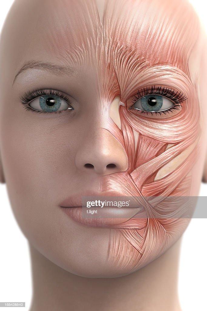 Imitieren Muskeln des Gesichts : Stock-Foto
