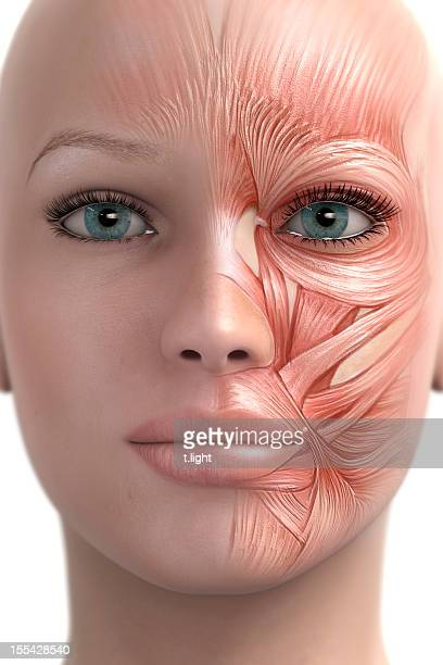 mimic muscle of the face - botox stock pictures, royalty-free photos & images