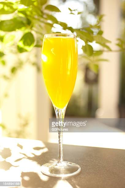 mimosa orange juice cocktail in champagne glass - mimosa stock pictures, royalty-free photos & images