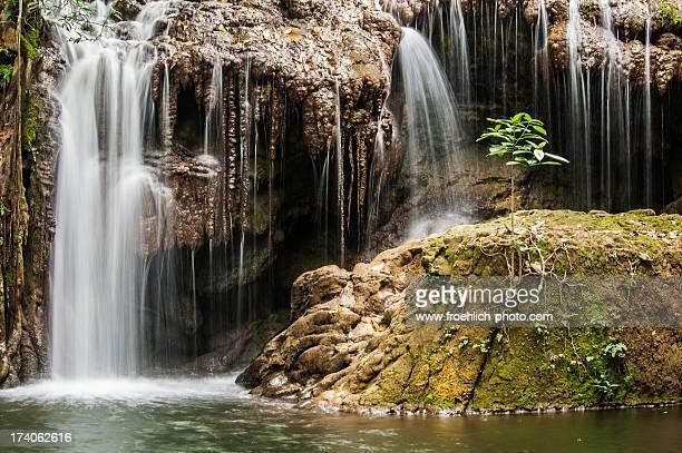 Mimoso river
