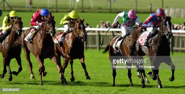 Minardi ridden by Michael Kinane wins The Middle Park Stakes from Endless Summer ridden by Jimmy Fortune at Newmarket Races