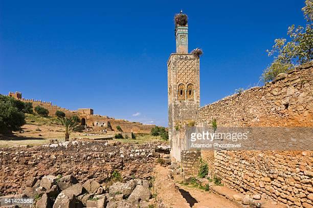 Minaret of the muslim sanctuary at Chellah ruins