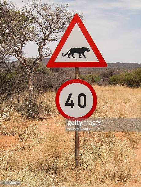 mind the leopards! - number 40 stock photos and pictures