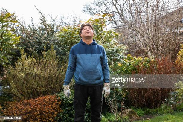 mindfulness gardening - one senior man only stock pictures, royalty-free photos & images
