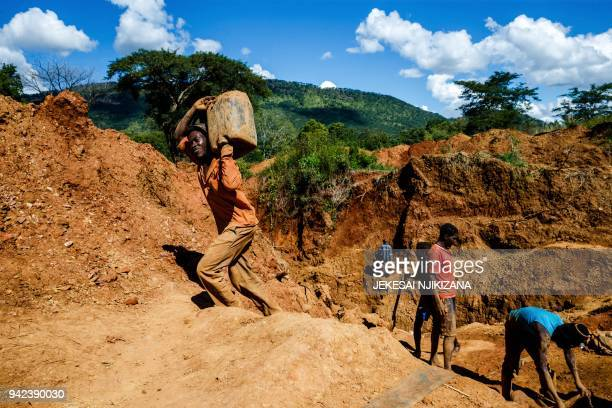 A miner carries a load of ore at Manzou Farm owned by Grace Mugabe wife of former Zimbabwean President Robert Mugabe in Mazowe Zimbabwe on April 5...