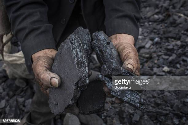 A miner holds pieces of coal at a site in Cucunuba Cundinamarca Department Colombia on Saturday July 2017 Colombia is set to produce a record of more...