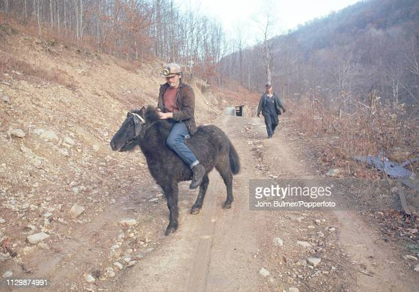 A miner on a pit pony near a drift mine Pike County Kentucky US 1967