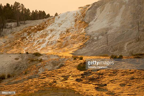mineral deposits form river of gold on hillside - timothy hearsum stock pictures, royalty-free photos & images