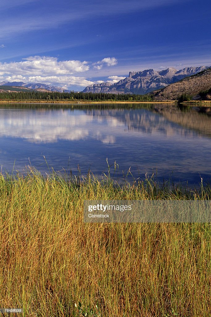 Mineral-rich pond near Jasper Lake , Jasper National Park , Alberta , Canada : Stockfoto