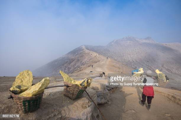 miners are carrying sulfur from kawah ijen volcano blue flames ,east java, indonesia - acid warning stock photos and pictures