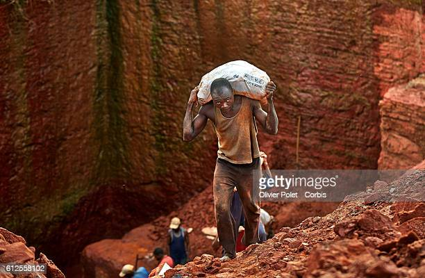 Miners carry bags filled with excess earth out of theirs concession surrounded by hoses pumping out the rain water from their plots 28 March 2013...