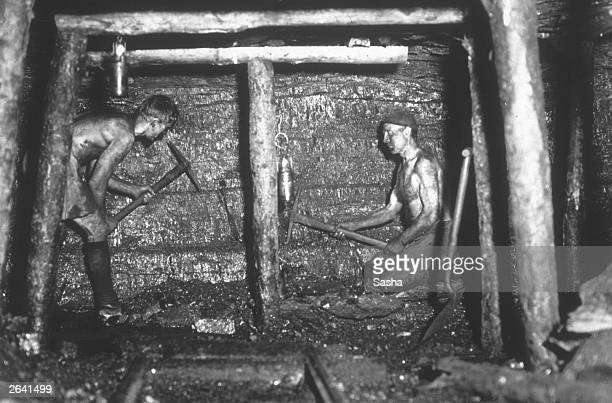 Miners working at the coal face of Tilmanstone colliery Kent The photograph was taken using a 'Sashalite' one of the first safe photographic flash...